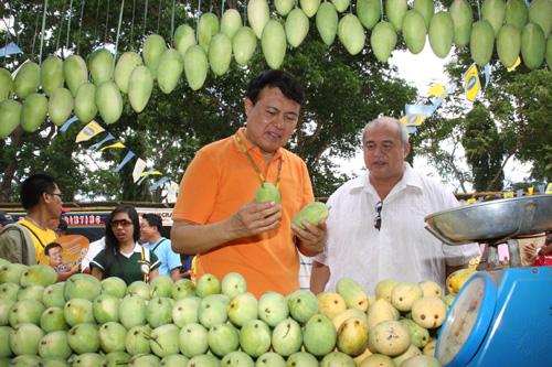 marketing of guimaras mangoes to the united states essay